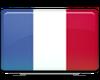 1saint-barthelemy-flag